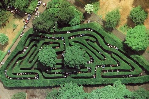 hampton_court_palace_maze