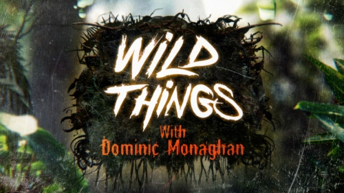 WildThings-ShowThumb